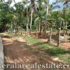 real estate trivandrum land plots sale in Ayira Parassala trivandrum kerala real estate